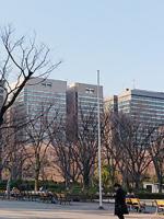 日病協「第173回 診療報酬実務者会議」出席の報告