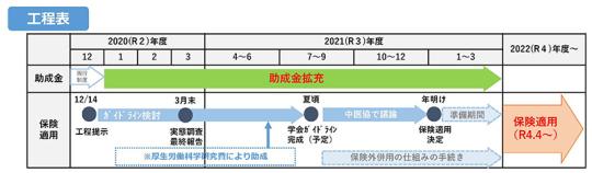 抜粋03_【総-2】不妊治療の保険適用に向けた工程表について_20210113中医協総会